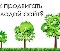 Раскрутка молодого сайта в Яндексе